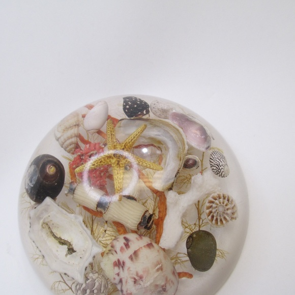 Other - Vintage Lucite Encased shells paperweight decor